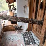 2014-01-02 - Baum durchbohrt Wohnhaus